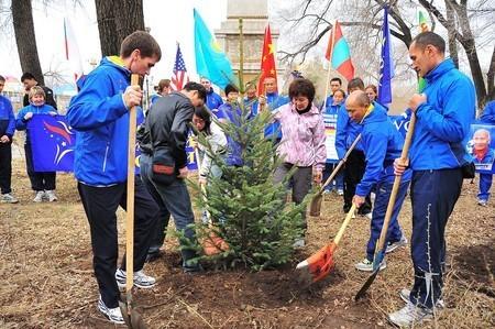 Planting A Tree. Planting a tree
